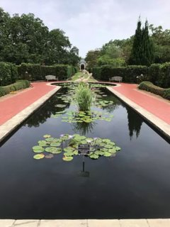 The fountains at the arboretum in City Park. A must see to unwind from festin' in this fun town.