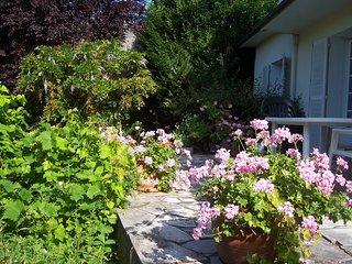 chambre dans maison particulière, en ville, avec jardin arboré