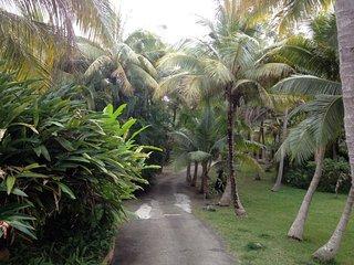 Escale Tropicale - Villa Crepuscule