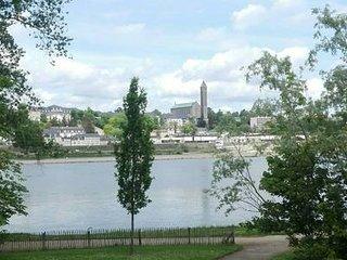 Charmant T1 Bis en bord de Loire