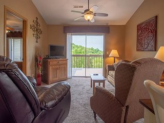 A Robin's Nest - 2 Bedroom, 2 Bath Condo close to SDC and Table Rock Lake!