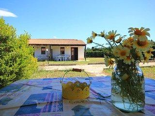 Salento Marsail Vacanze