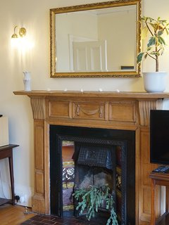 Roseneath Apartment is full of period features - like this feature fireplace