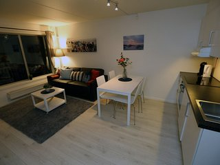 Apartment in the center of Oslo with Internet, Lift, Parking, Garden (742601)