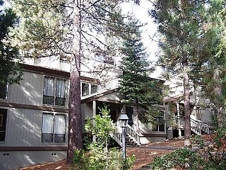 Wonderful Forest Condo Sleeps 10