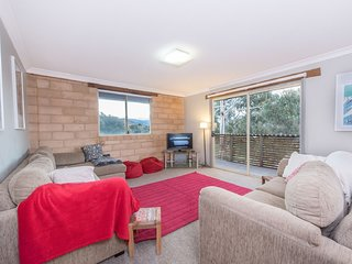 Burramys 3 - Modern with views to Lake Jindabyne and the mountains