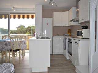 Rental Apartment Saint-Cyprien (Pyrénées-Orientales), 1 bedroom, 4 persons