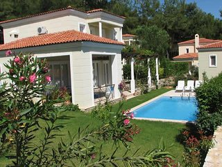 Beautiful Detached Villa with own swimming pool in mountainside peaceful setting