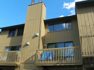 Updated and Pet Friendly Waterville Valley Condo for the family!