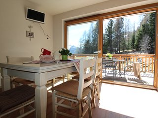Haus Stefan    Roof Top Family  Apartment near Ski Slope 2/4 pax