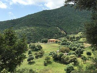 Villa Ale