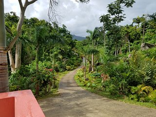 Large Secluded Vacation House near rain forest and beaches! Clean & comfortable