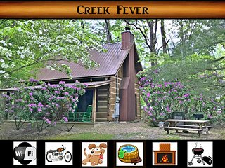 Creek Fever