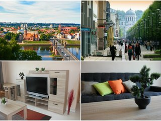 Spacious 3 Room Apartment City Center Kaunas