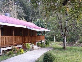 Elegant 6-BR farmhouse for groups