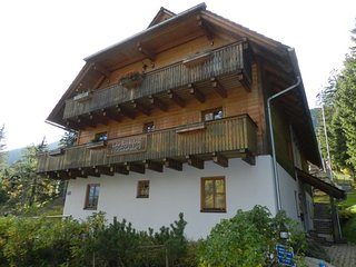 Landhaus Nockalm top 5 Apartament whit Sauna Near Ski Slopes for 4/5peopl