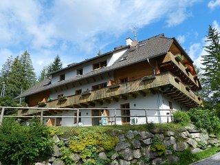 Landhaus Nockalm top 9 Apartament whit Sauna Near Ski Slopes for 4/5peopl