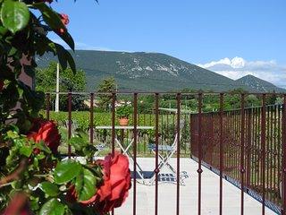 Au cœur des vignes du Luberon - Les Petits Cléments