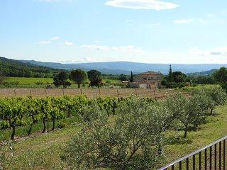 Au ceour des vignes du Luberon - Les Petits Clements