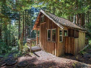 Rustic Secluded Cabin in the Redwoods
