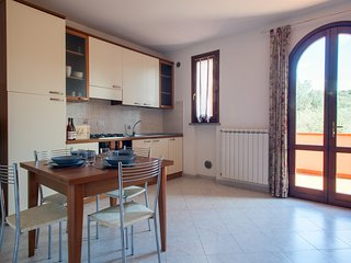 Ansonica - Bright two-room apartment with swimming pool in Suvereto