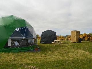 Pant y Rhedyn Snowdrop Dome
