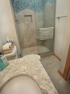 Updated En-Suite Master Bath-Artistic Tile Work and Cape Cod Quartz