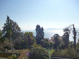 Delizioso appartamento vista lago