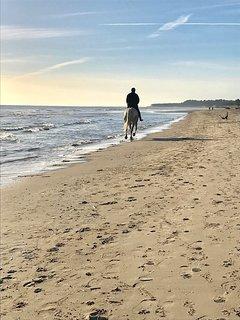 Autumn morning stroll on Curracloe Beach