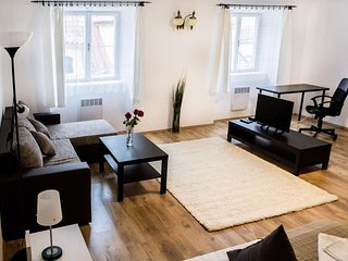 Apartment 620 m from the center of Prague with Internet (677085)