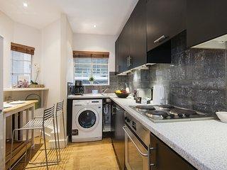 The Wonderful Chelsea Manor Street Apartment - CHK