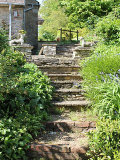 Looking up back steps to terrace and private entrance