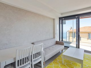 Wonderful apartement near Monaco - W403