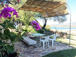 Casa con giardino alberato e prato verde