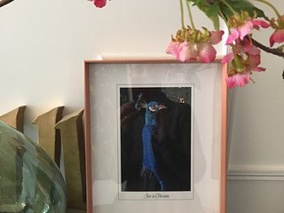 Iris la fleuriste a Bordeaux