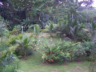ZEN Rainforest Retreat