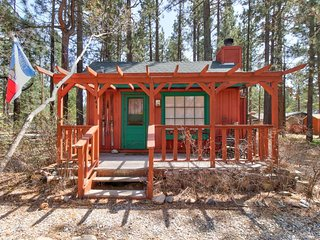 NEW LISTING! Peaceful cottage w/large backyard space, secluded location & more