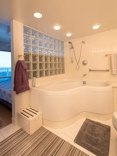 Master Bathroom including jacuzzi