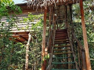 The Jungle Paradise, Habarana (Tree house/Mud house/Camping )