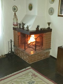 The fireplace in the living room.