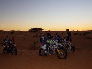 Le phare du desert tours est l'agence de voyage numero 1 en Mauritanie.All tours