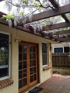 Beautiful Wisteria, hanging from the verandah.