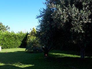 Villetta tra immersa nel verde, tra campagna , mare  e citta