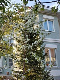 Russia holiday rental in Volga District, Samara Oblast