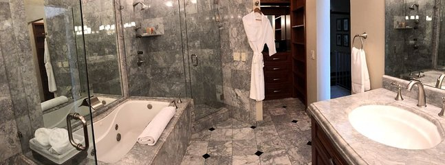 The amazing master ensuite bath has 2 sinks, standup shower walk-in closet and a large bath tub.