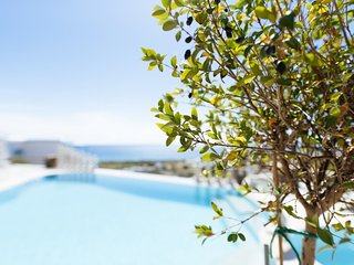 Gorgeous 1-Bedroom Apartment in Tinos