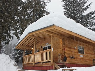 Grizzly Cabin, kitchenette, Hot-tub (Sleeps 5)