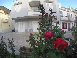 Apartment La Conchiglia