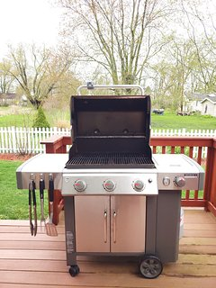 Weber stainless steel grill