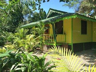 Casa AMARILLA - El Jardin de Playa Negra